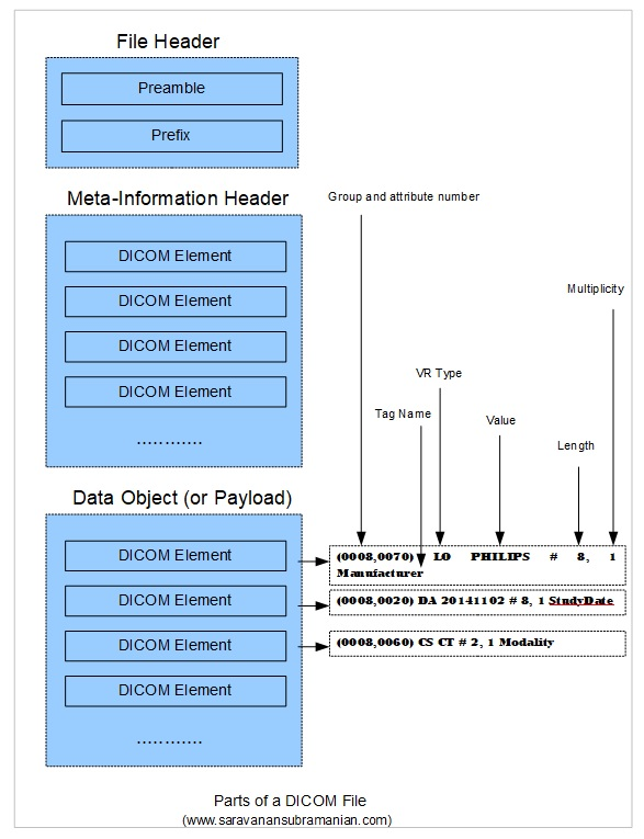 DICOM Basics using  NET and C# - Making Sense of the DICOM